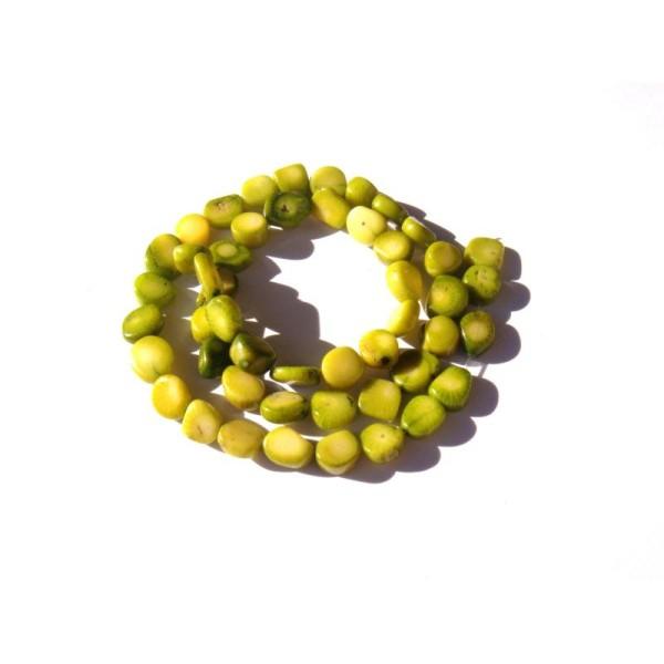 Corail teinté vert : 10 Perles très irrégulières 7/11 MM x 6/9 MM - Photo n°1