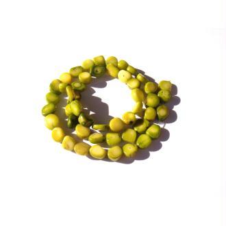 Corail teinté vert : 10 Perles très irrégulières 7/11 MM x 6/9 MM