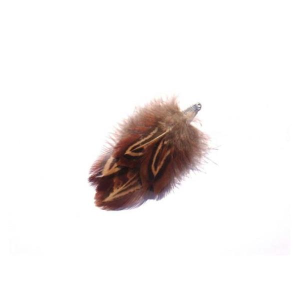 Faisan : pendentif plumes 7,5 CM environ de hauteur - Photo n°1