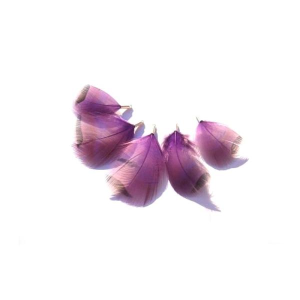 Perdrix teintée violet : 5 Petits pendentifs 34/47 MM de hauteur - Photo n°1