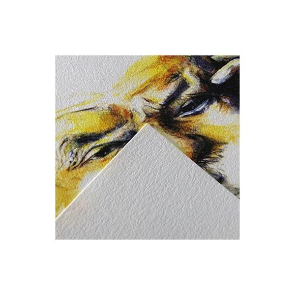 Canson 'C à grain' 400060600 Bloc Papier à dessin 30 feuilles 224g Grain Fin A4 Blanc Naturel - Photo n°1