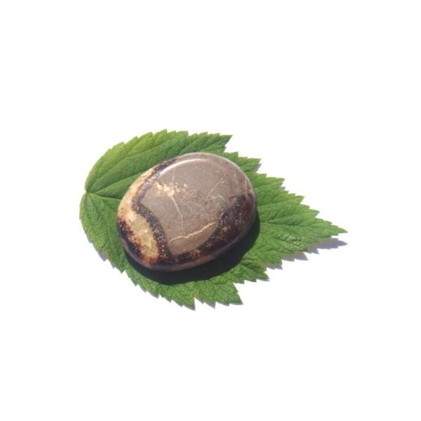 Septaria : galet plat 4,3 CM x 3,3 CM x 1 CM de tranche - Photo n°2
