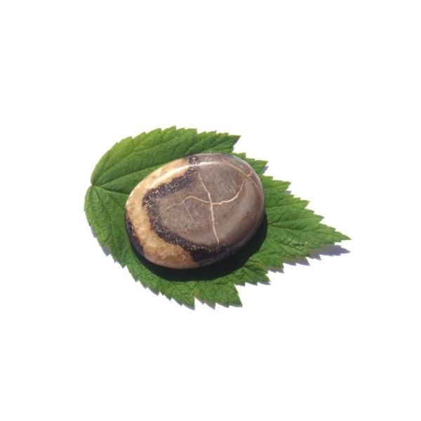 Septaria : galet plat 4,3 CM x 3,3 CM x 1 CM de tranche - Photo n°1