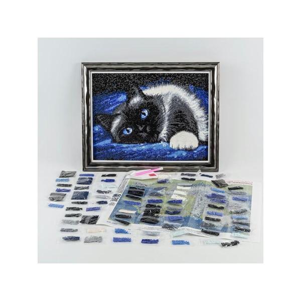 Broderie Diamant Kit - Chien teckel - 40 x 30 cm - Photo n°2