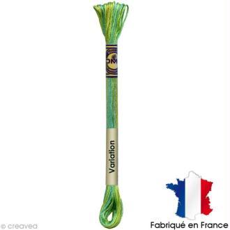 Fil à broder DMC mouliné Color variation 4050 Vert prairie - Echevette 8 m