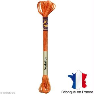Fil à broder DMC mouliné Color variation 4124 Orangeraie - Echevette 8 m