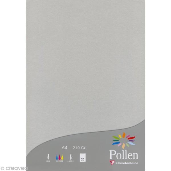 Papier Pollen A4 25 feuilles Argent - Photo n°1