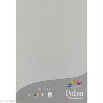 Papier Pollen A4 25 feuilles Argent
