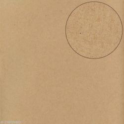 Papier scrapbooking Bazzill 30 x 30 cm - Lisse - Classic kraft