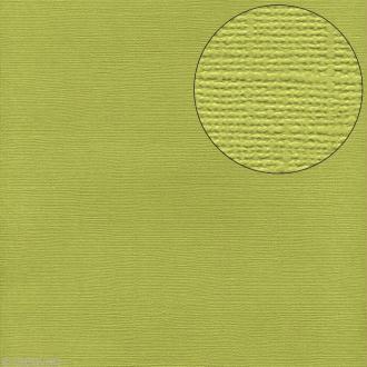 Papier scrapbooking Bazzill 30 x 30 cm - Texture - Limeade (vert)
