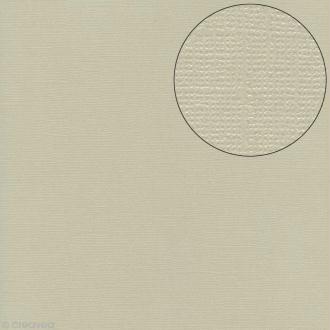 Papier scrapbooking Bazzill 30 x 30 cm - Pailleté - Bling glass slipper (Gris-beige)