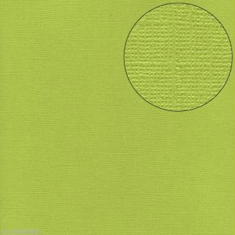 Papier scrapbooking Bazzill 30 x 30 cm - Pailleté - Bling pretty cash (vert)