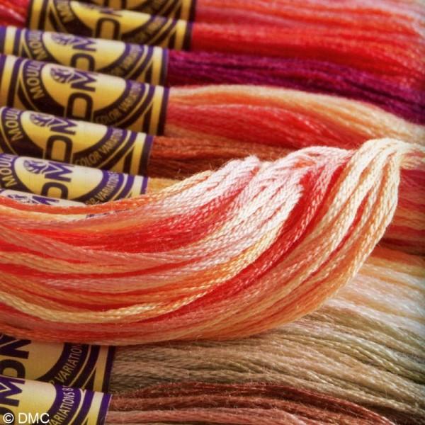 Fils à broder DMC mouliné Color variation - Echevette 8 m - Photo n°2