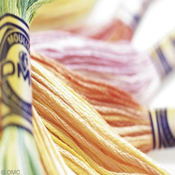 Fils à broder DMC mouliné Color variation - Echevette 8 m - Photo n°3
