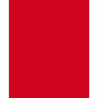 Feutrine polyester 1,3 mm 24 x 30 cm - Rouge