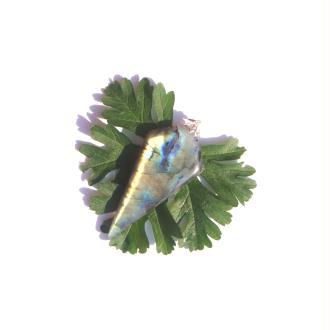 Labradorite : Pendentif fait main 7,4 CM de hauteur x 3,2 CM de largeur max