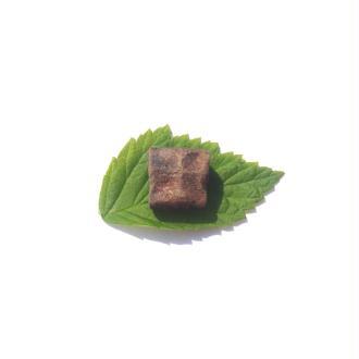 Staurolite : Petite pierre brute 1,5 CM x 1,4 CM environ