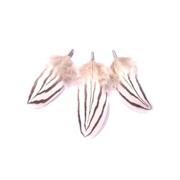 Faisan Argenté : 3 pendentifs 5,7 CM à 7,2 CM de hauteur - Photo n°1