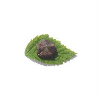 Staurolite : Petite pierre brute 1,7 CM x 1,5 CM environ