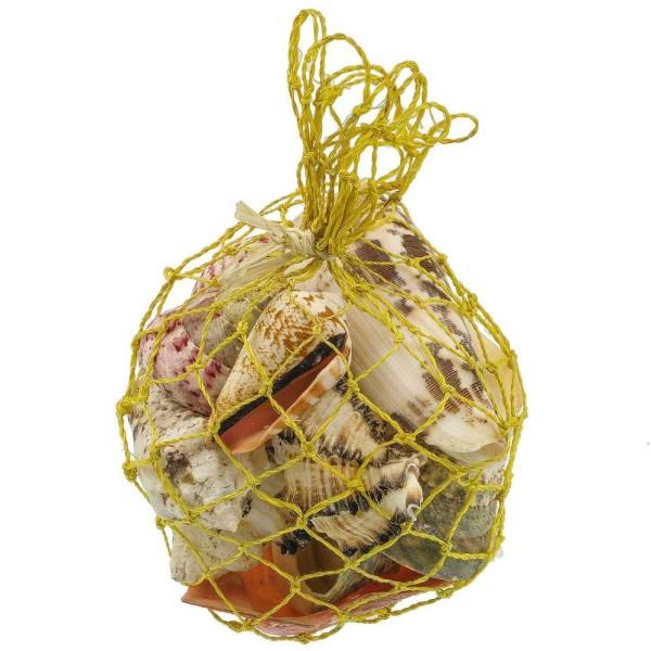 Petit filet contenant des coquillages variés - Photo n°1