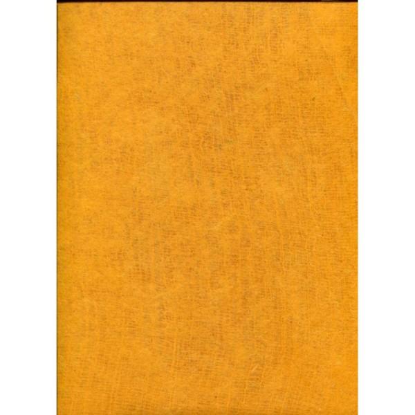 Toilé orange, papier népalais - Photo n°1