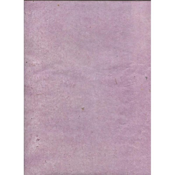 Toilé parme, papier népalais - Photo n°1
