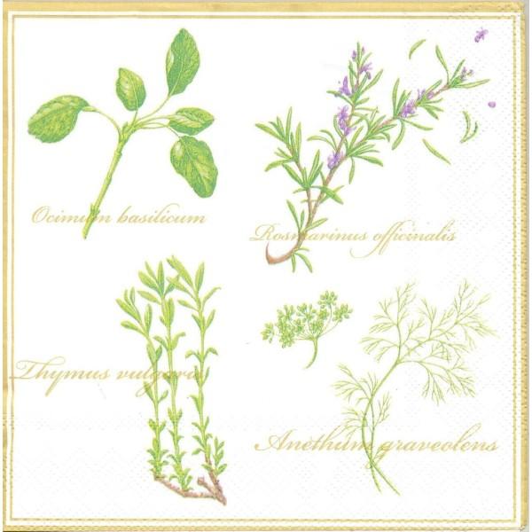4 Serviettes en papier Herbes Basilique Romarin Thym Format Lunch Decoupage Decopatch S4311A Stewo - Photo n°1