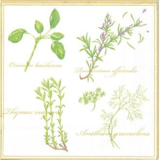 4 Serviettes en papier Herbes Basilique Romarin Thym Format Lunch