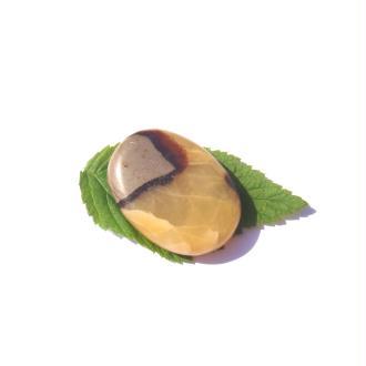 Septaria : Galet plat 4,5 CM x 3,3 CM x 1 CM max de tranche