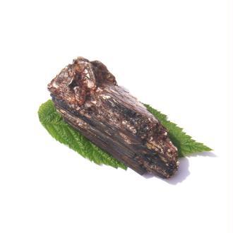 Tourmaline fibreuse/Mica : Pierre brute 7 CM x 3,5 CM x 2,4 CM environ ( 67 g )