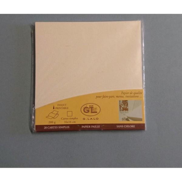 20 Cartes simples papier de paille 200g - Photo n°1