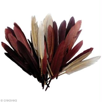 Plumes Indien Camaïeu chocolat - 15 cm - 10 gr