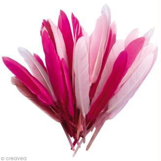 Plumes Indien Camaïeu rose - 15 cm - 10 gr