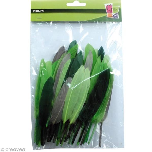 Plumes Indien Camaïeu vert - 15 cm - 10 gr - Photo n°2