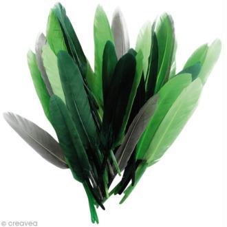 Plumes Indien Camaïeu vert - 15 cm - 10 gr