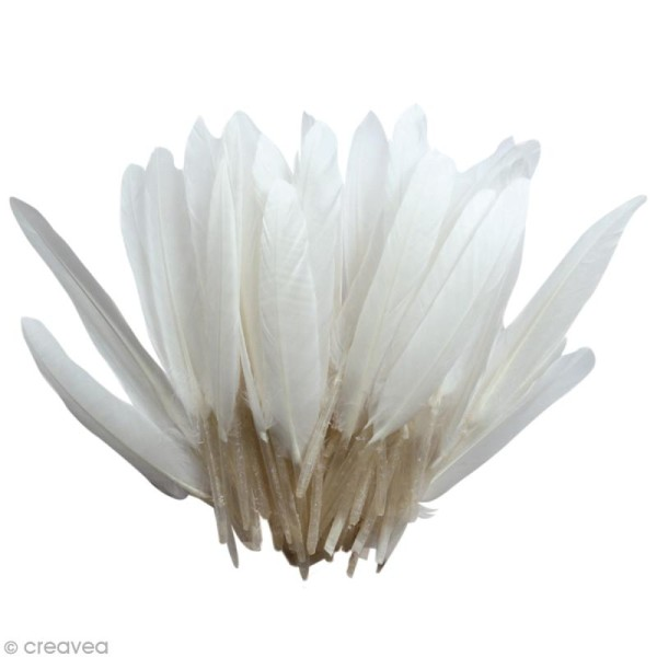 Plumes Indien Blanc - 15 cm - 10 gr - Photo n°1