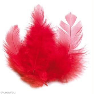 Plumes Coq Rouge - 10 cm - 3 gr