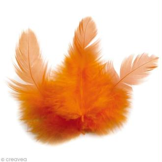 Plumes Coq Orange - 10 cm - 3 gr