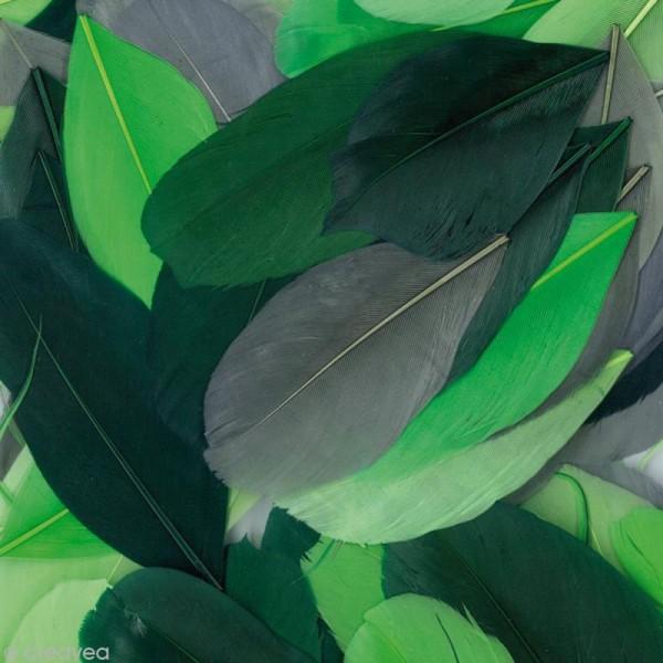 Plumes Coupées Camaïeu vert - 6 cm - 10 gr - Photo n°1