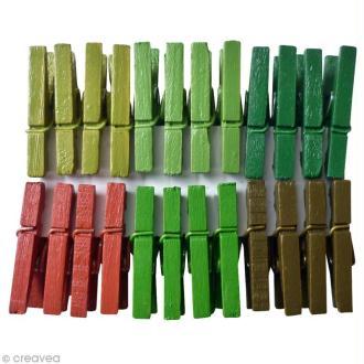 Pinces à linge 2,5 cm - Couleurs Forêt - 24 pcs