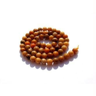 Corail Fossile Safran multicolore : 5 Perles assorties 6 MM de diamètre