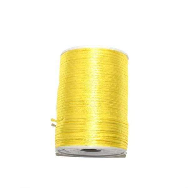 Queue de rat jaune clair 2,2 mm x1 m - Photo n°1