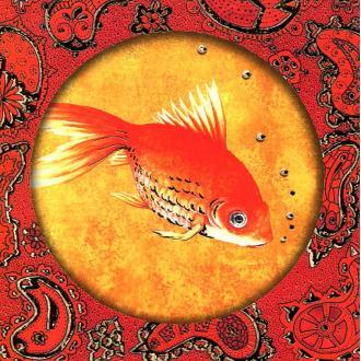Poisson rouge 26 - carte postale