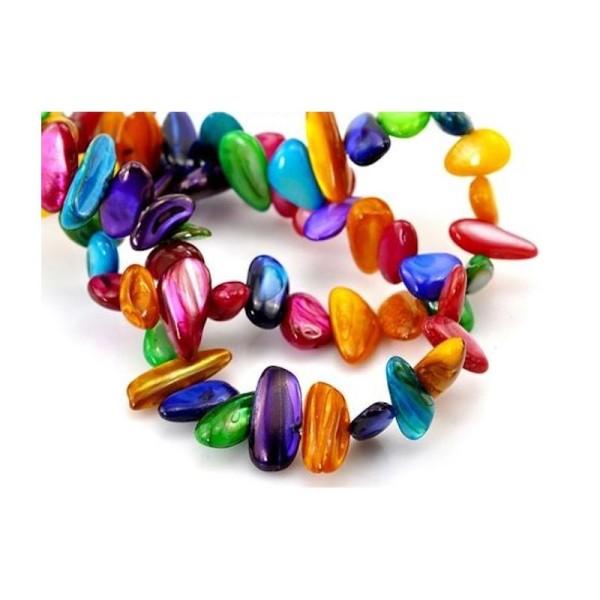 Collier de Chips de Nacre Multicolore
