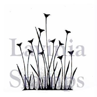 Tampon clear Lavinia Stamps - Renoncules de fée