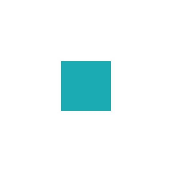 Brushmarker - turquoise c247 - Photo n°2