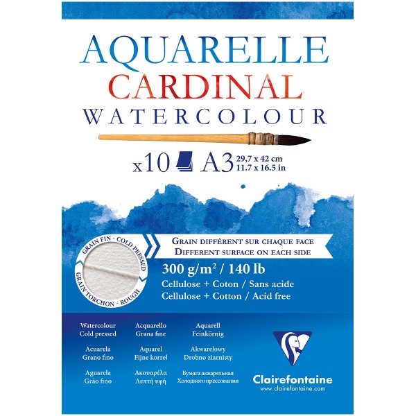 Bloc Papier Aquarelle Cardinal 300 g - 29,7 x 42 cm - 10 feuilles - Photo n°1