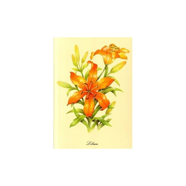 Image 3D - astro 51 - 24x30 - lilium - Photo n°1