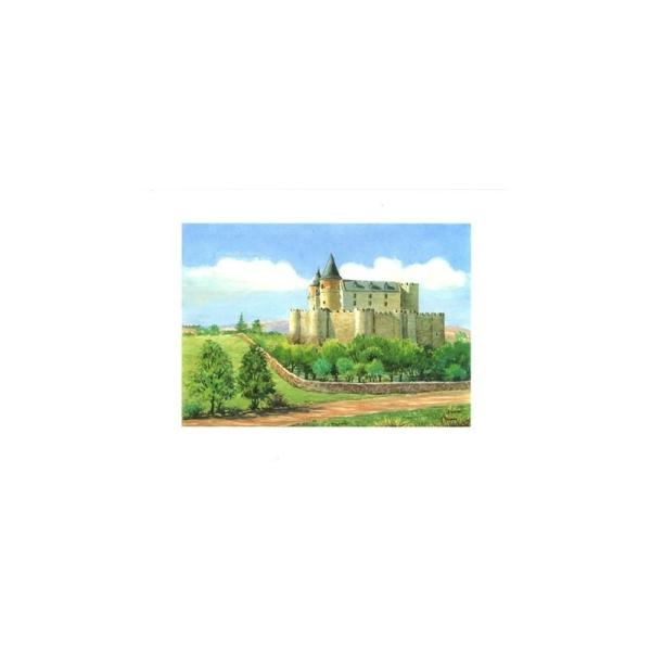 Image 3D - astro 536 - 24x30 - château avec remparts - Photo n°1