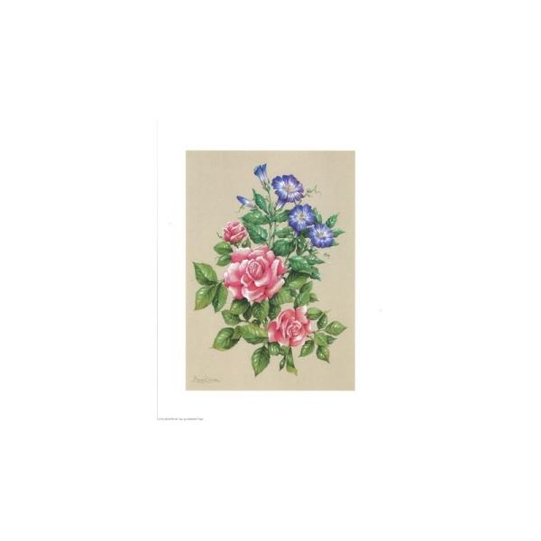 Image 3D - astro 505 - 24x30 - bouquet rose/violet - Photo n°1